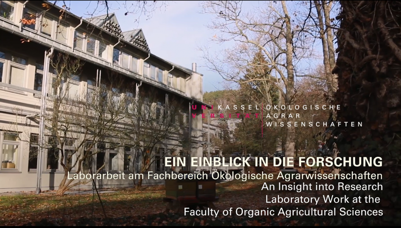 Laboratory work at the Faculty of Organic Agricultural Sciences